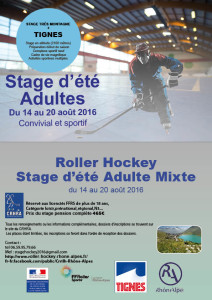 STAGE2016adulte-paper